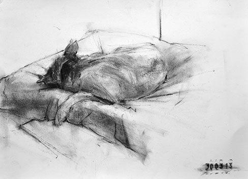 Ginny Grayson, Bat, 2013.  Charcoal on paper.