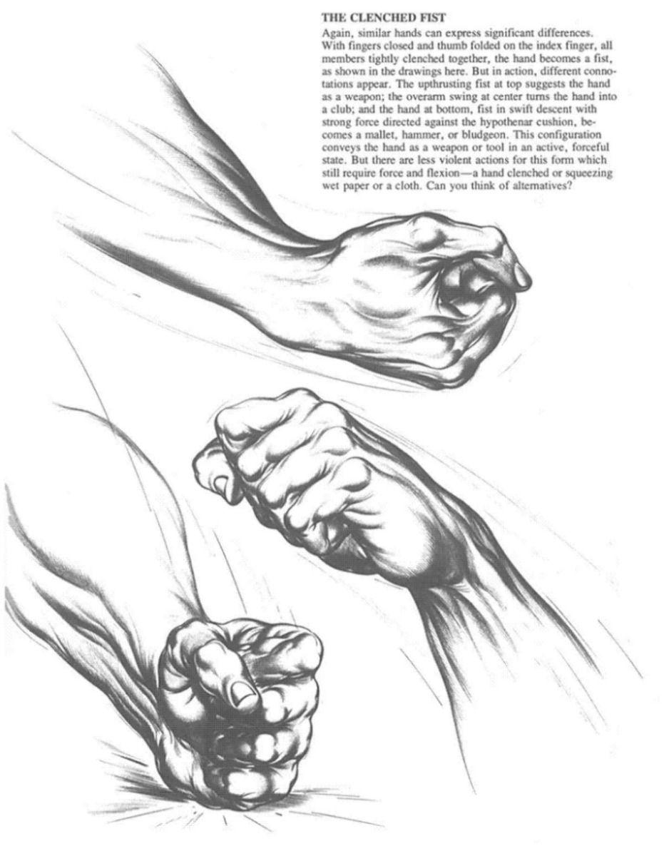 Burne Hogarth - hands | Reference | Anatomy | Pinterest | Anatomy ...