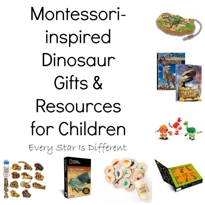Montessori-inspired Dinosaur Gifts & Resources For