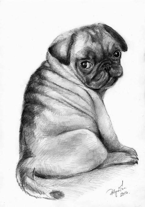 pug drawing | Love pugs | Pinterest | Centros de mesa navidad ...