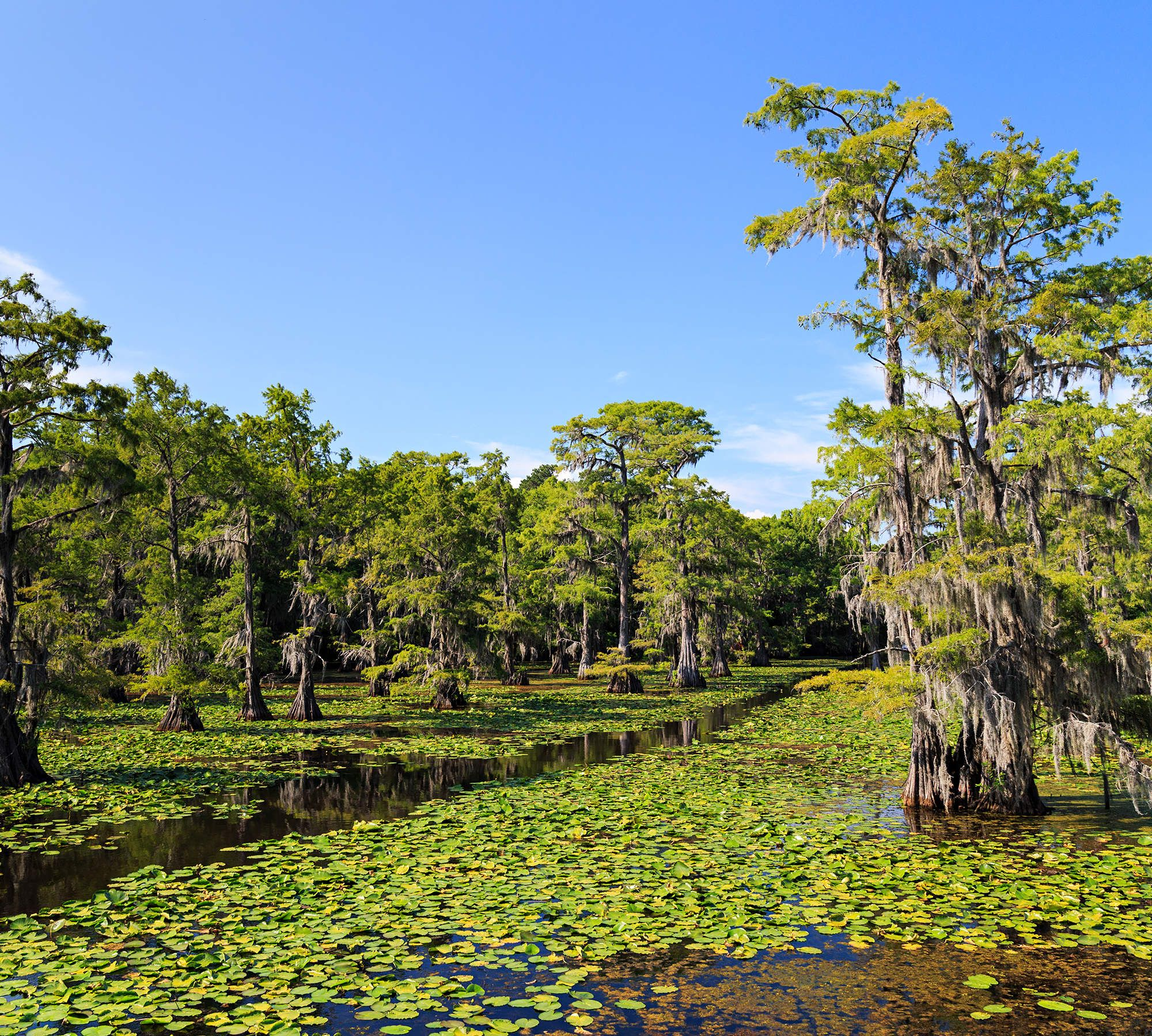The Most Beautiful Places in Texas You Didn't Know Existed ...