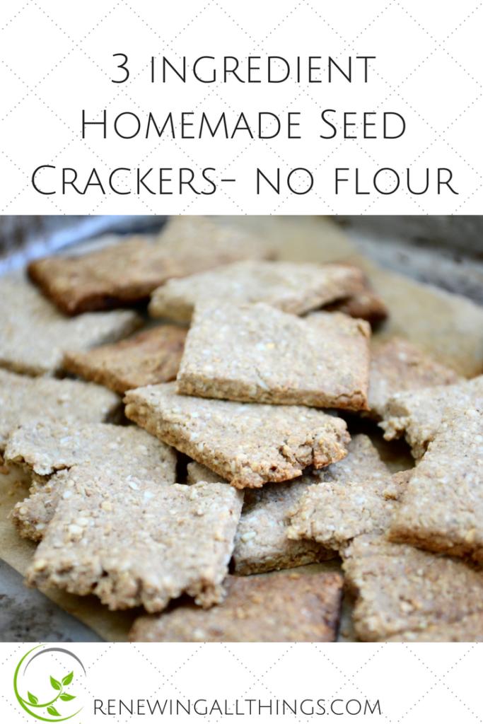 Simple Seed Homemade Crackers Recipe Renewing Blog Healthy