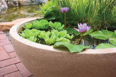 Superb Patio Ponds, Patio Pond, Patio Water Garden | Aquascape