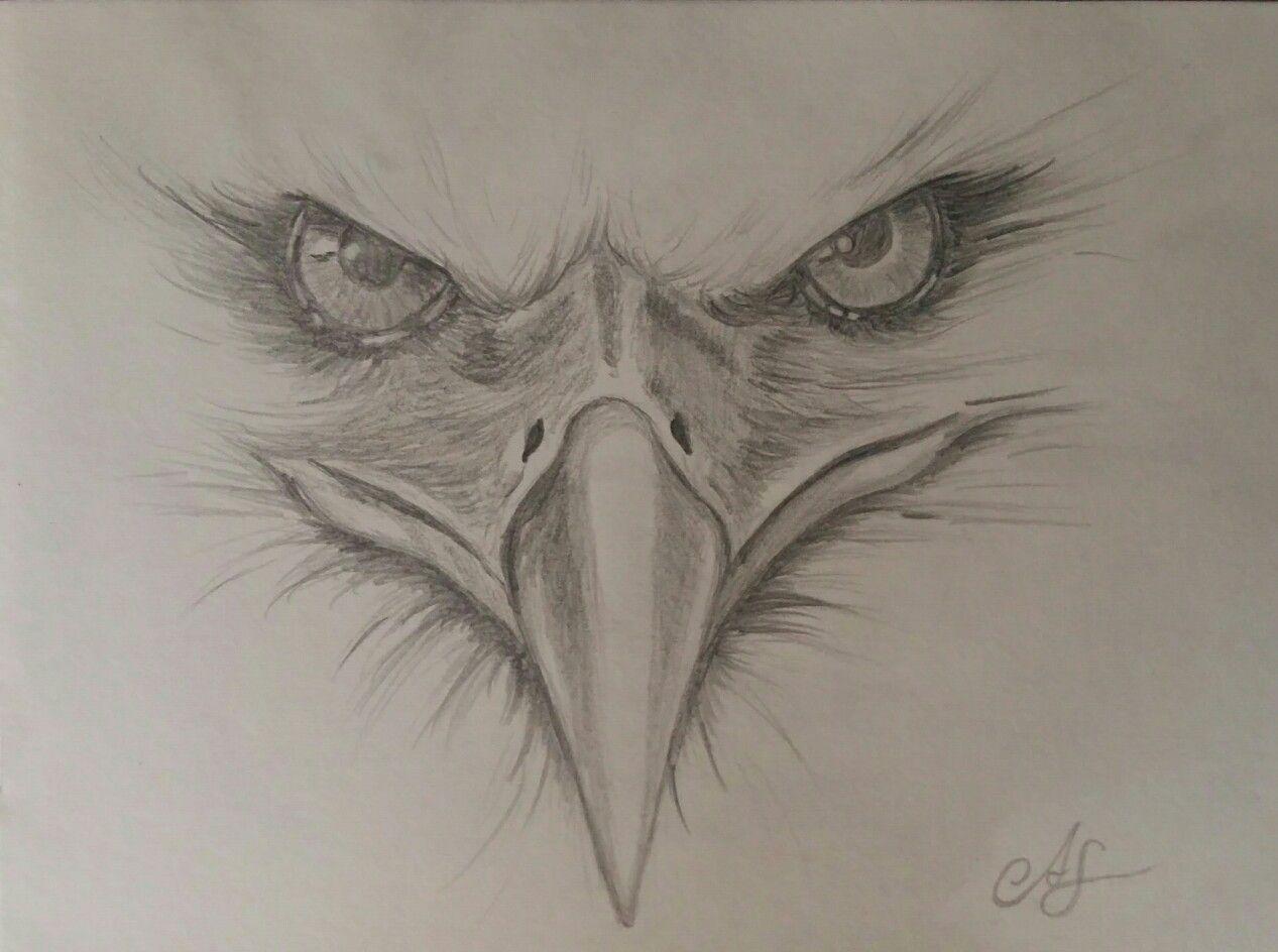 Adler gezeichnet nach Vorlage  Adler zeichnung, Adler gemälde