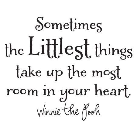 The Littlest Things Wall Quotes™ Decal