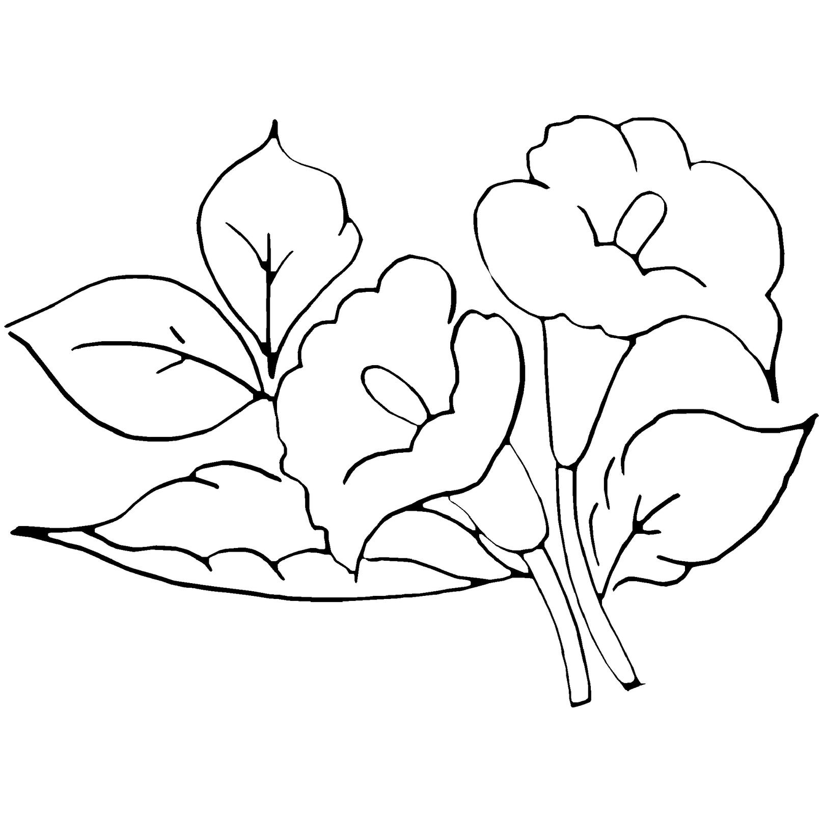 Moldes De Flores Para Colorear Dibujos De Flores Disenos De Vitrales Pintar En Tela