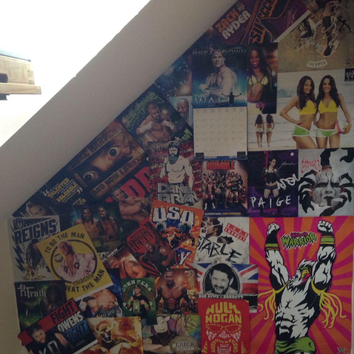 Wwe bedroom ideas poster wall kid stuff pinterest for Wwe bathroom decor