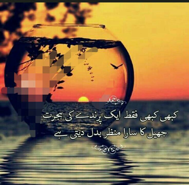 Pin by Tamim Bhai on عکس خیال Urdu thoughts, Urdu poetry