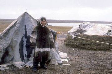 the arctic people transportation migration inuit arctic