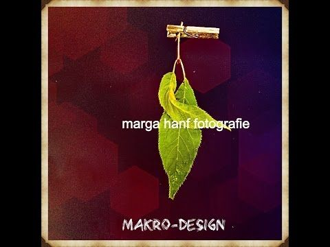 Makro-Design Fotografie Marga Hanf - YouTube