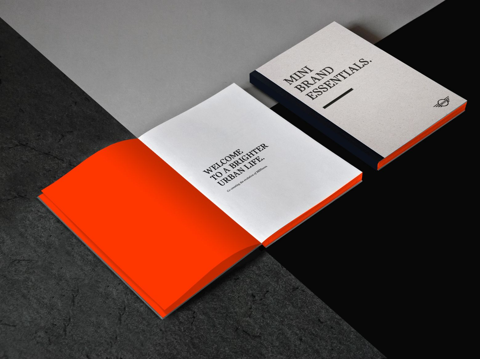 Marcela Grupp Art Design Direction Mini Brand Essentials Book Brand Design Cards Against Humanity