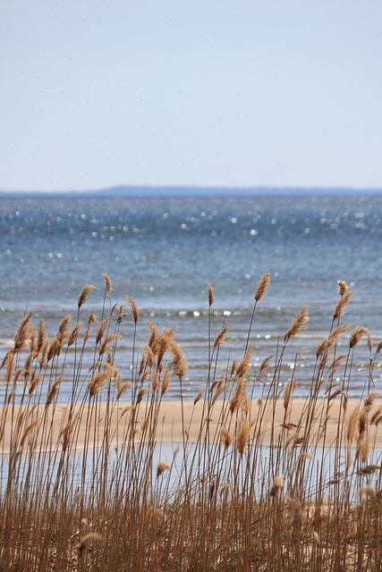 North of Menominee, Michigan (UP)  By doc030395