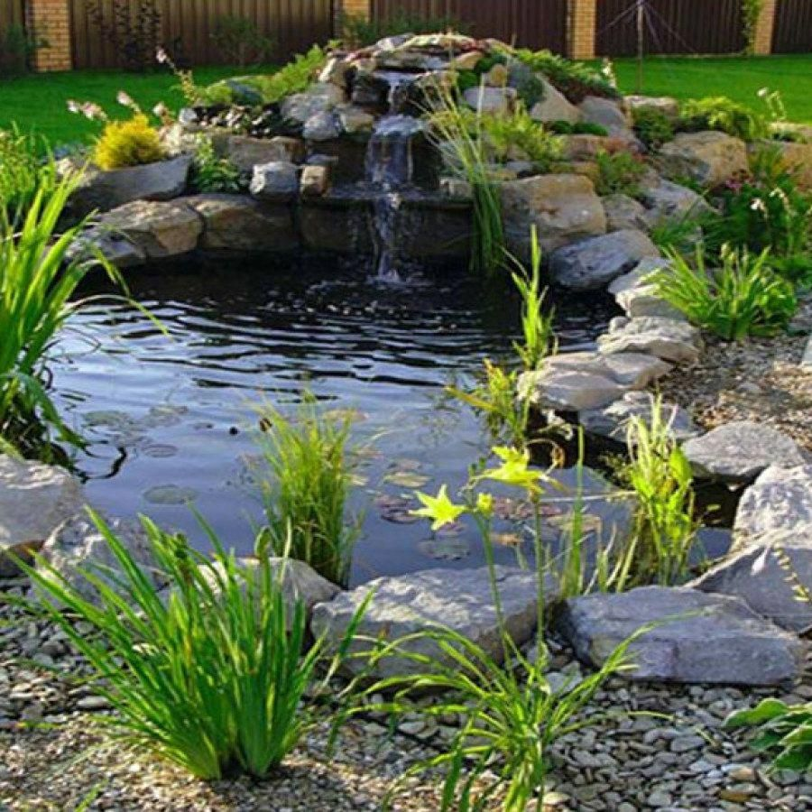 Tips For Building Ponds In Your Backyard Avec Images Comment