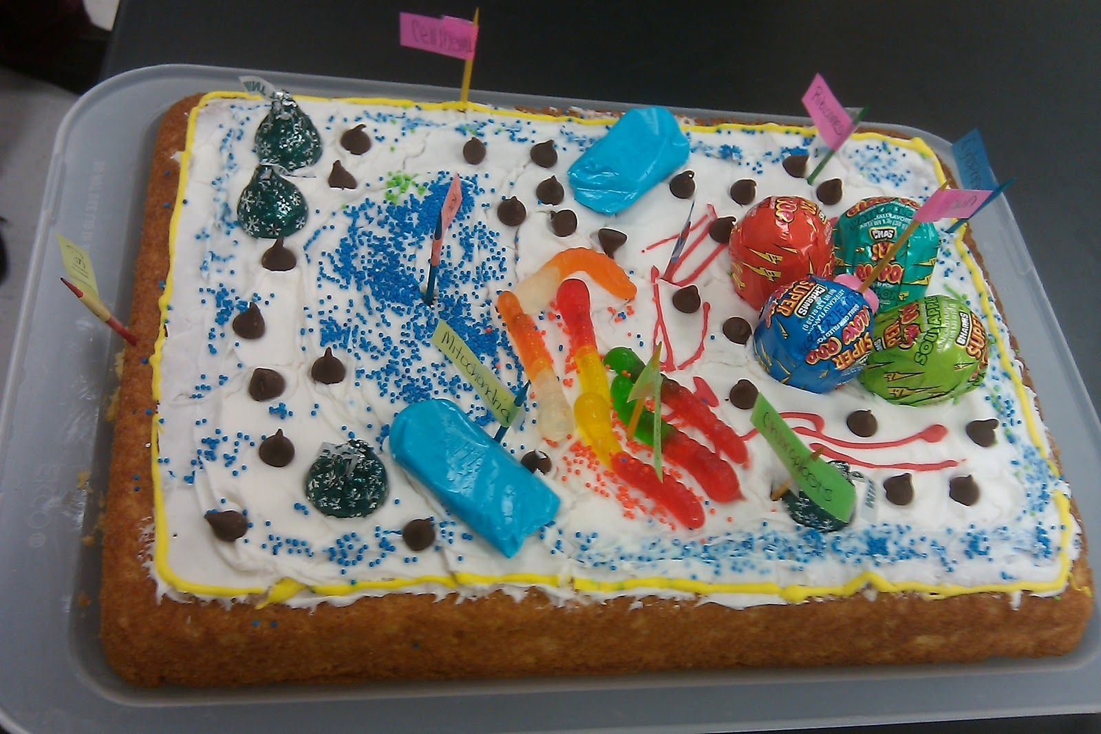 3d Plant Cell Diagram - Year of Clean Water