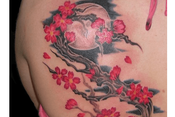 Moon And Cherry Blossom Tattoo Cherry Blossom Tattoo Shoulder Blossom Tattoo Cherry Blossom Tattoo Meaning