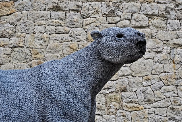 28/1/12 - The Tower of London became home to the The Royal Menagerie in the year 1251 when Henry III received a Polar Bear as a gift from Norway, He was a huge attraction and would go swimming in the Thames (the Polar Bear, not Henry III).