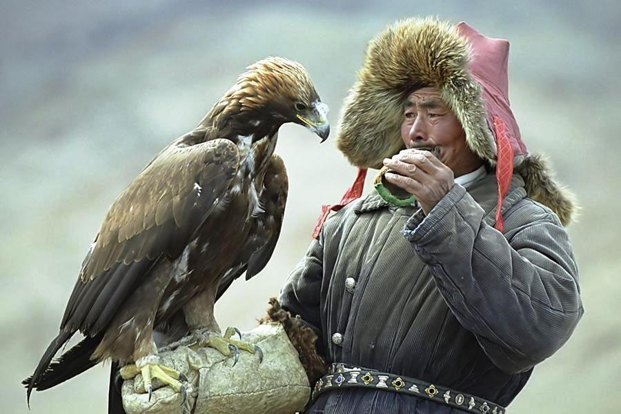 фото птицы и человек картинки красивое пожелание