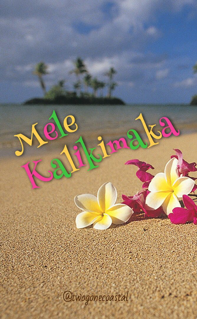 Mele Kalikimaka Hawaii Christmas Hawaiian Christmas Hawaiian Holidays