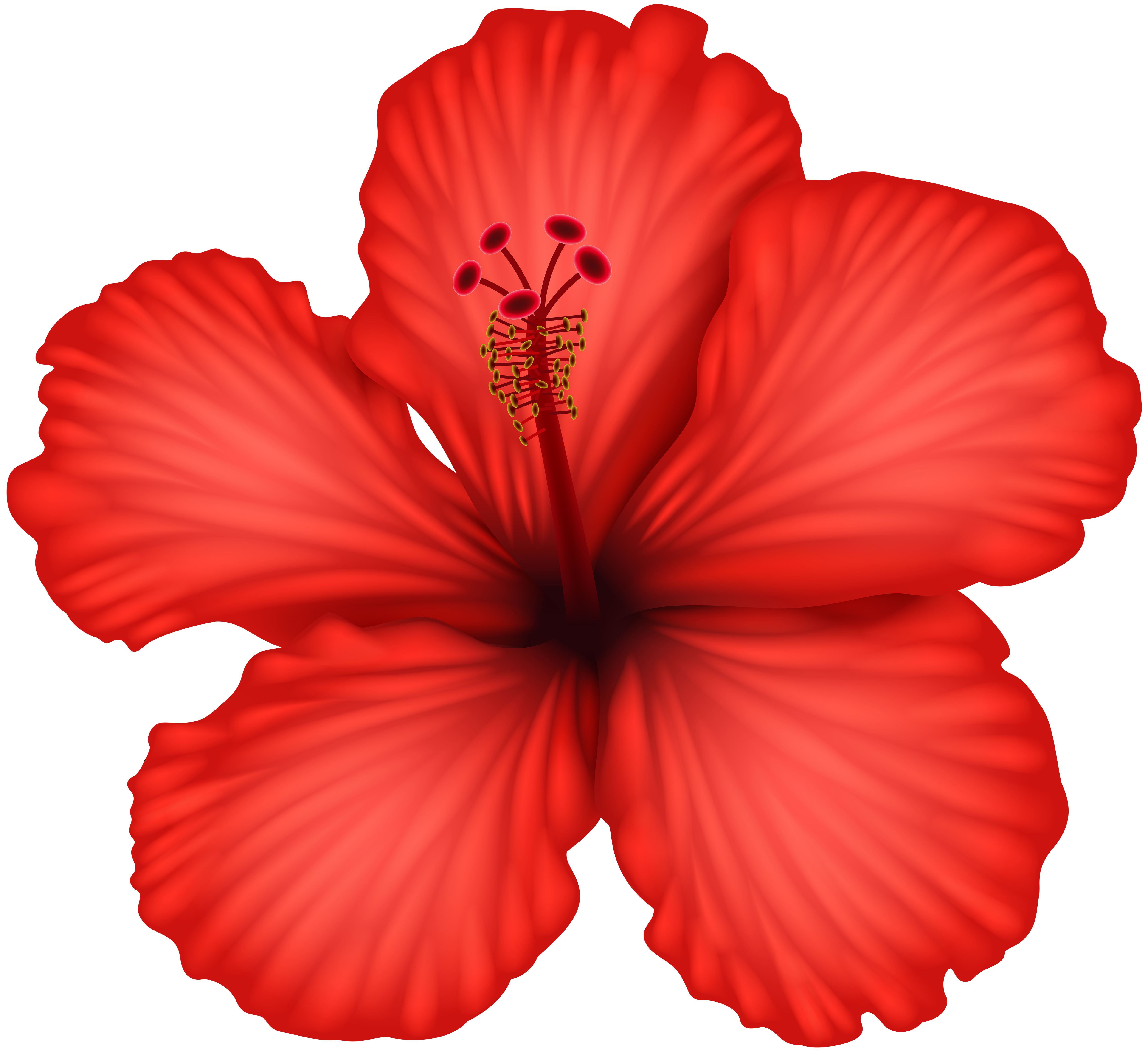 Red Hibiscus Png Clip Art Gallery Yopriceville High Quality Images And Transparent Png Free Clipart Free Watercolor Flowers Hibiscus Image Flower Painting