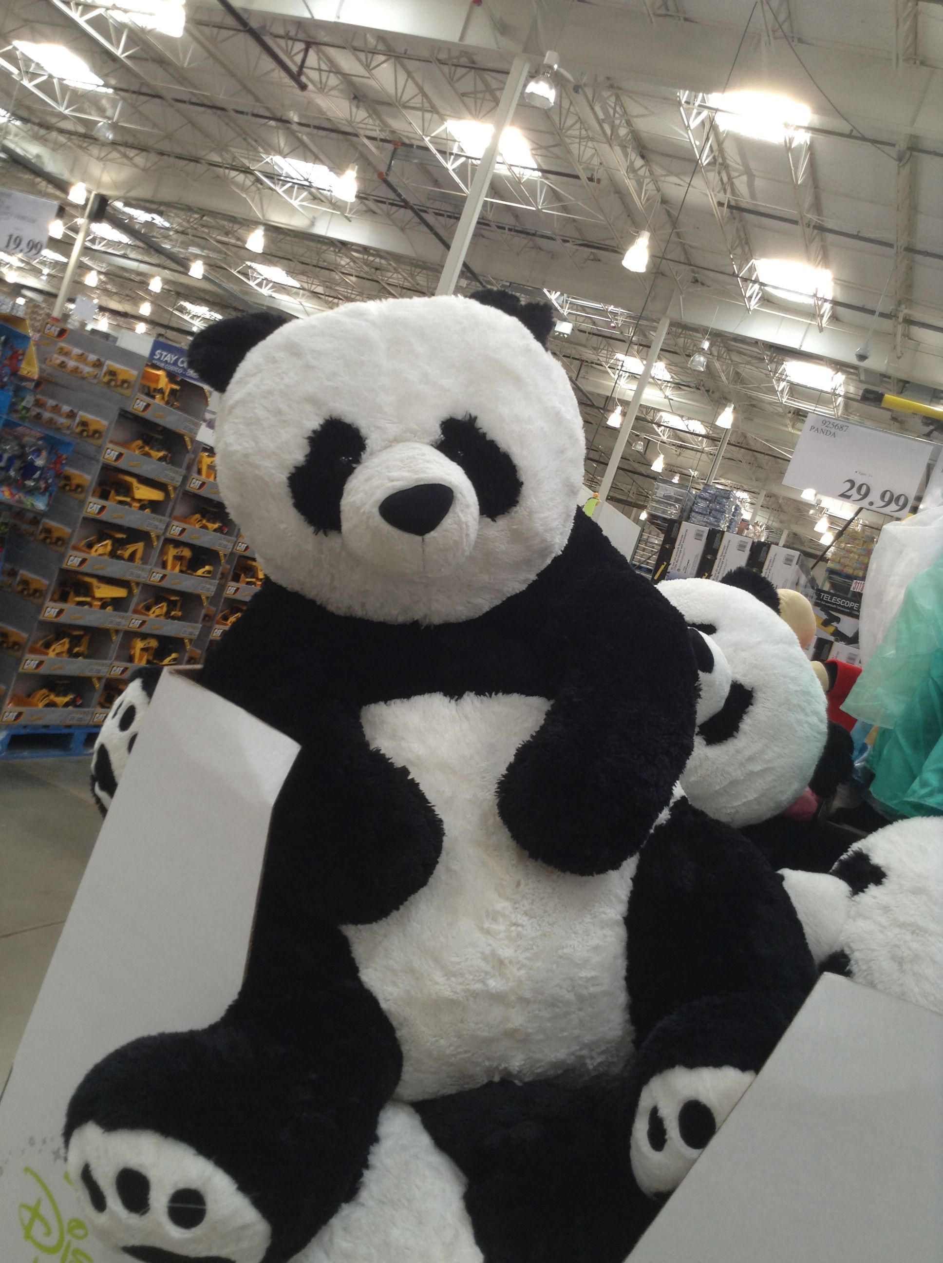 Life Size Panda Bear Someone Needs To Get Me One Of These I Want