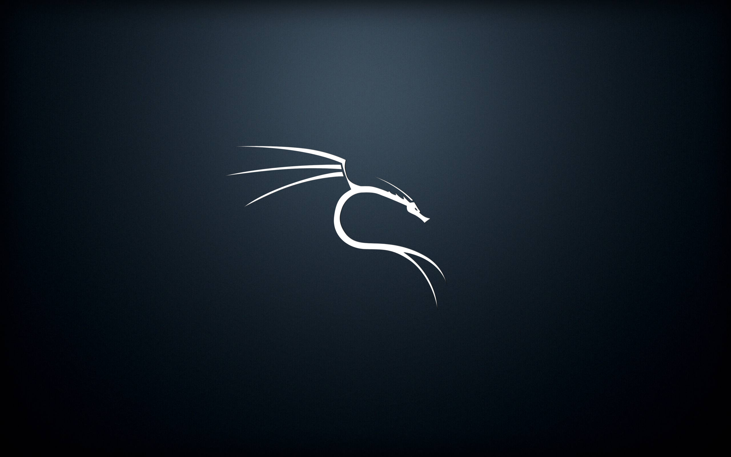 Kali Linux Collection See All Wallpapers Wallpapers Background Internet Linux Windows Wallpaper Kali