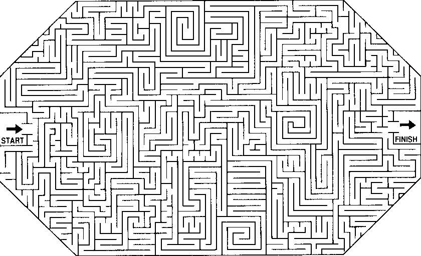 Angles And Lines Math Maze Maze Worksheet Math
