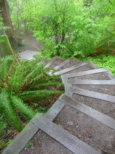 Gravel Pressure Treated Wood Stairs Garden Stairs Outdoor   Pressure Treated Wood Stairs   L Shaped   Exterior   Timber   45 Degree Stringer   8 Foot