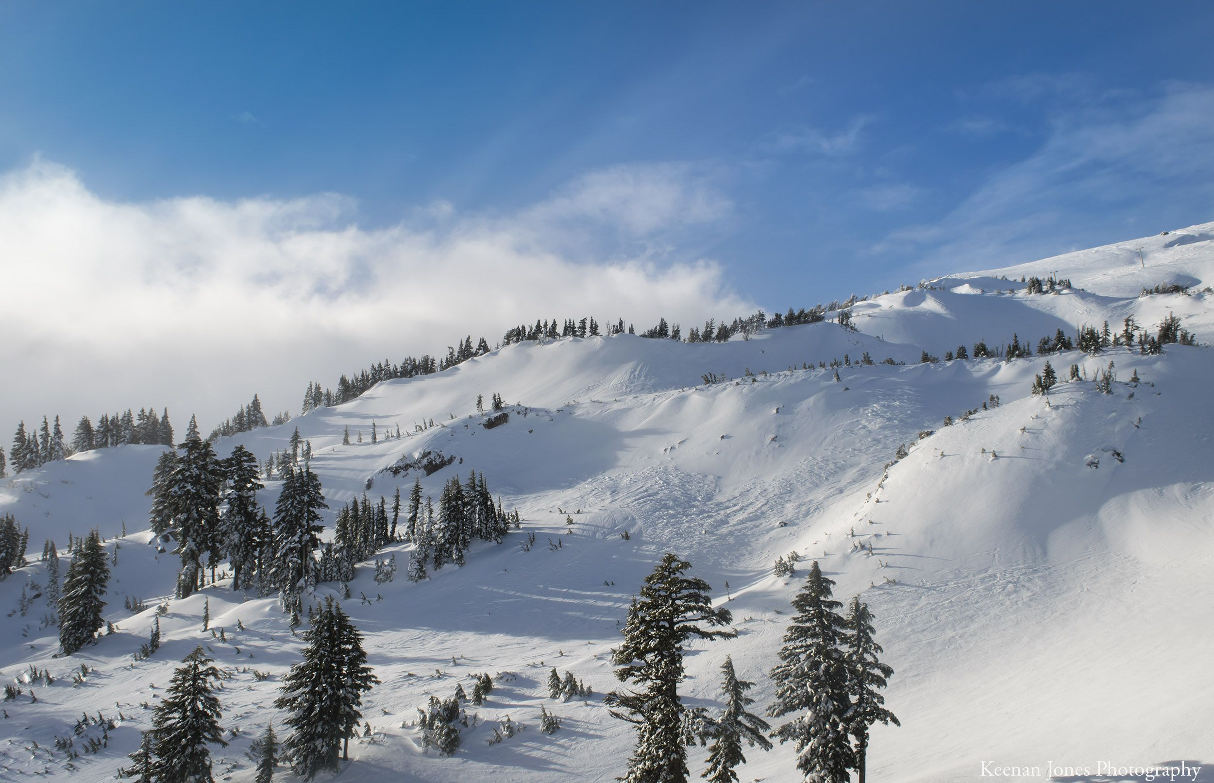 So many lines to choose from - Mt. Hood Oregon [OC][2500x1612]