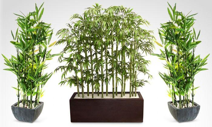 Resultado de imagen para decoracion de interiores con plantas cañas ...