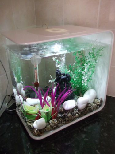 Fish & Aquariums Bio Orb Tank Light