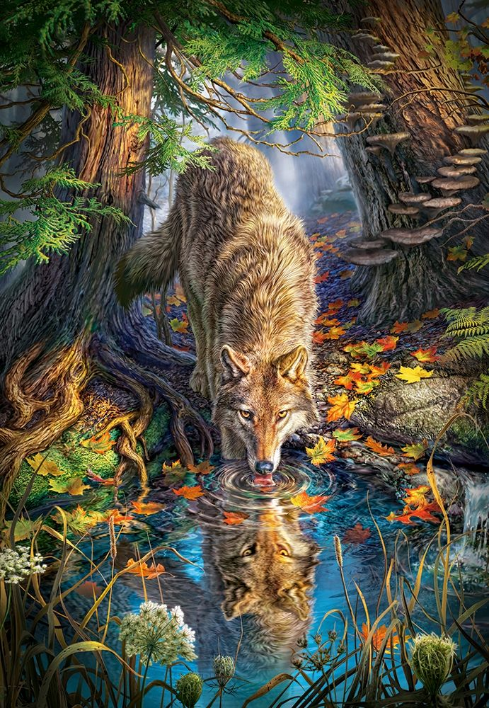 Photo of Puzzle Wolf in the Wild