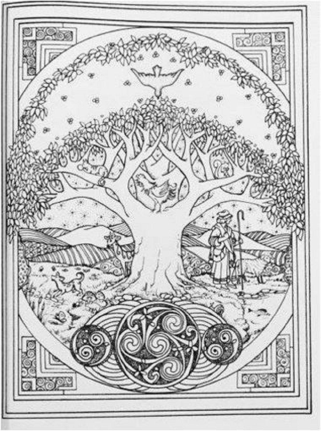 Adult Coloring Book Celtic Art Design Stress Relief Pattern Bird ...