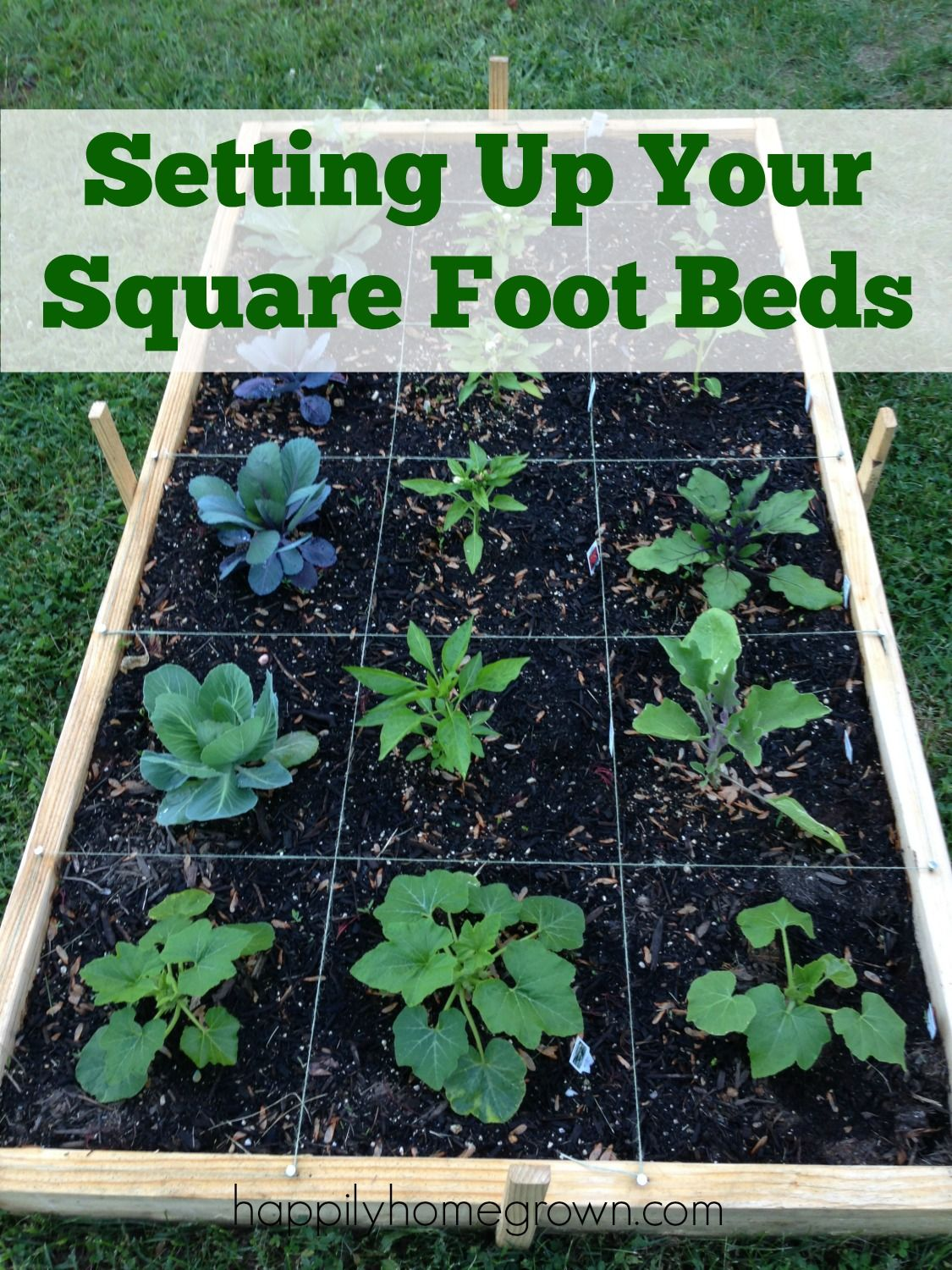 Setting Up Your Square Foot Beds Gardening For Beginners Square