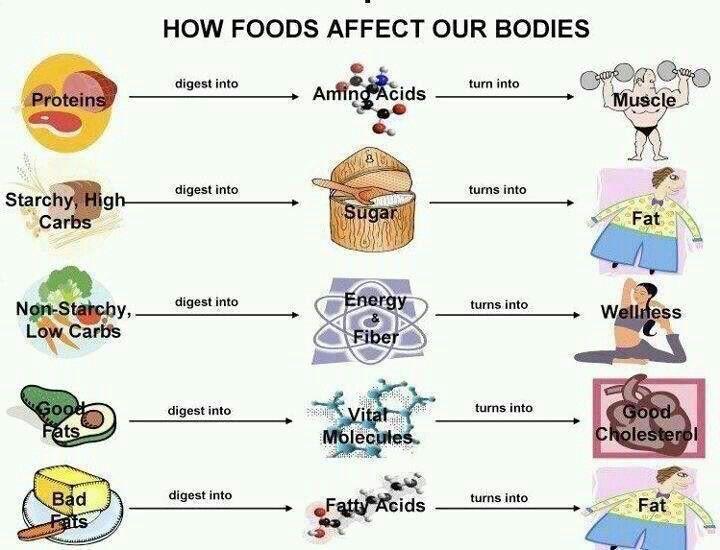 Food Chart  Healthy Food Choices    Food Charts