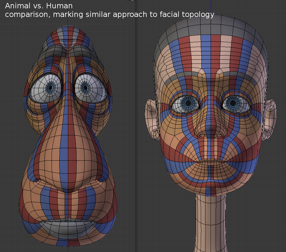Example of the finalized facial topology for sheep franck for 3ds max face modeling