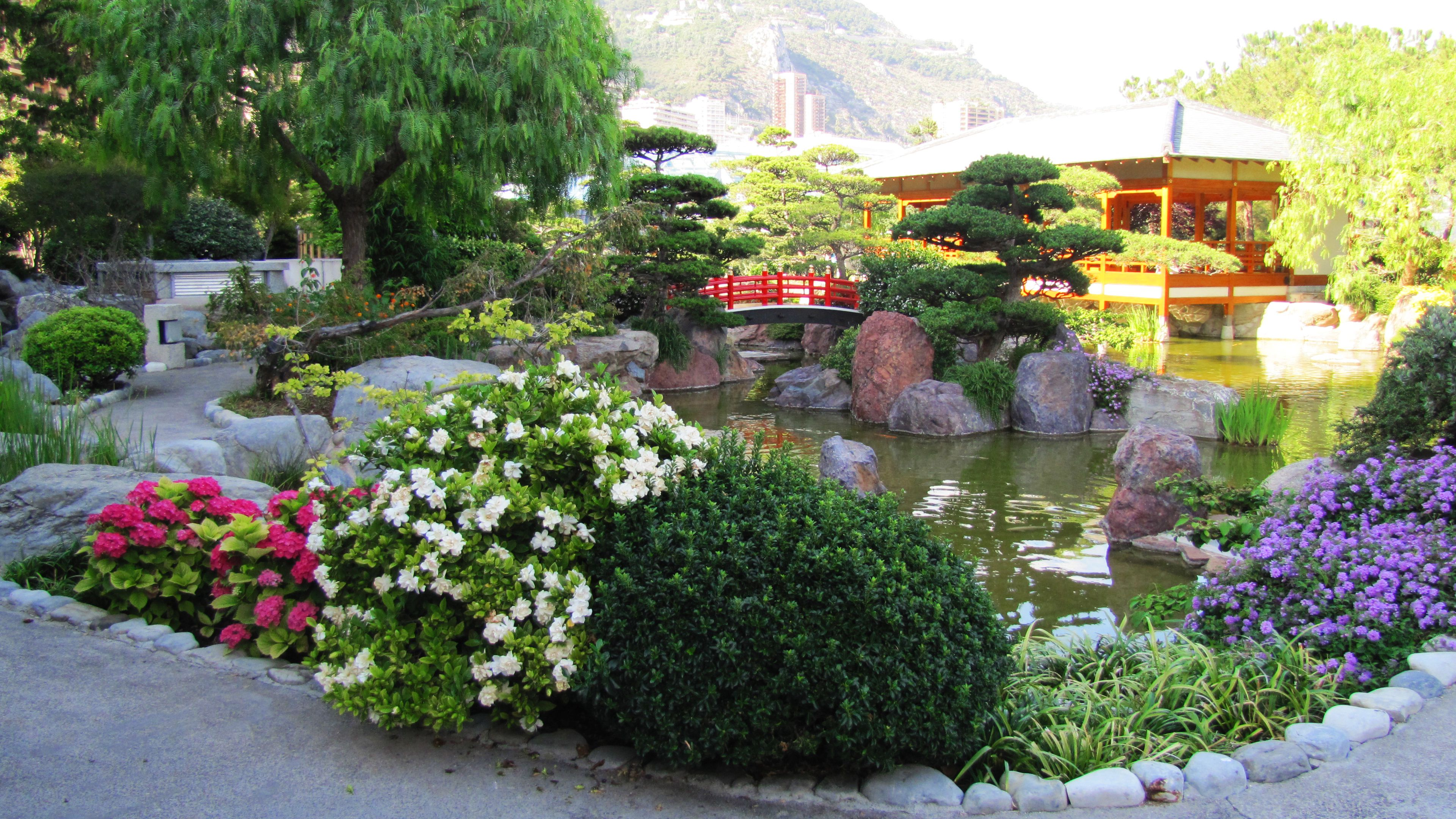 Princess grace kelly 39 s japanese flower garden monaco for Flowers for japanese gardens
