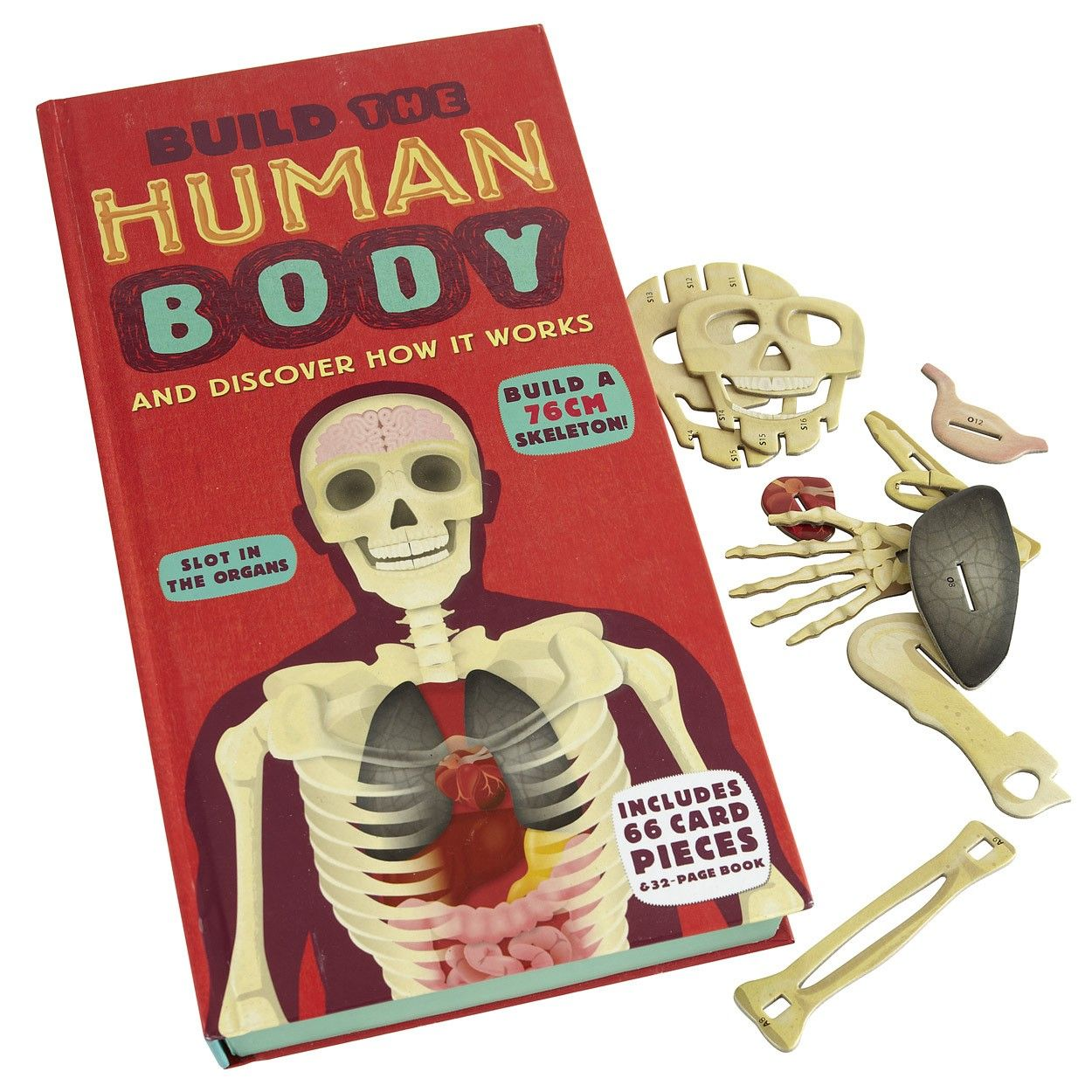 Build A Human Body Book | Traditional Children's Toys and Gifts | ASPACE