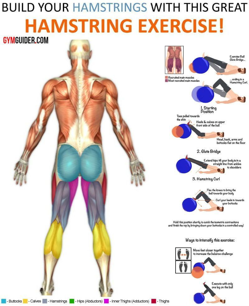36+ Where are your quadriceps inspirations
