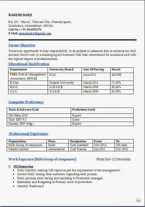 curriculum vitae cv example Sample Template Example of Excellent
