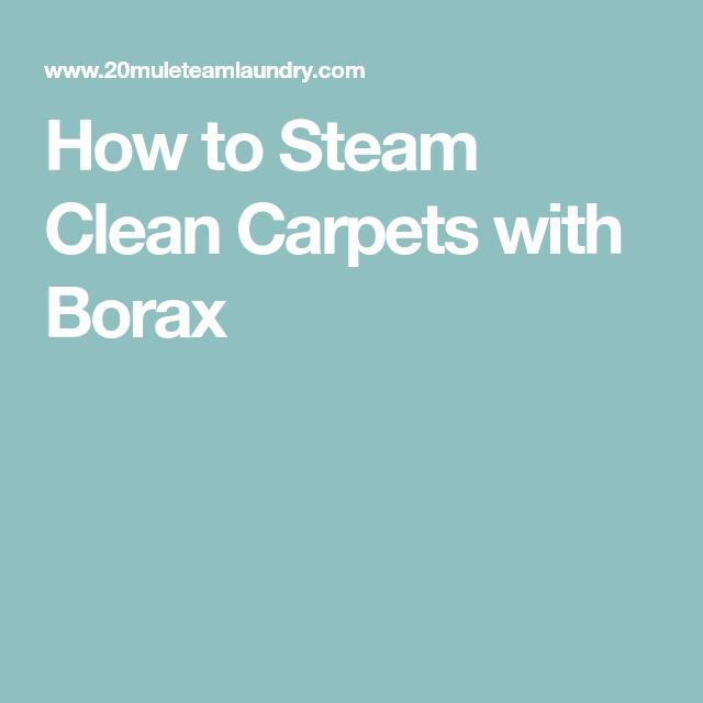 How Steam Clean Carpets Borax Carpet Cleaning