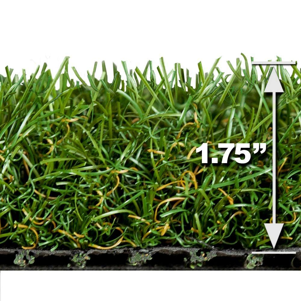 Turf Evolutions Luxurious Indoor Outdoor Landscape Artificial Synthetic Lawn Turf Grass Carpet 5 Ft X 10 Ft 206 Synthetic Lawn Lawn Turf Grass Carpet
