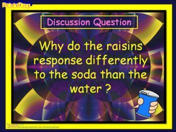 Science Lab- Raisin Drop