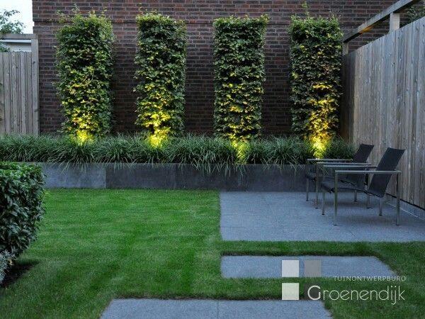 Rustige beplanting met verlichting   Tuin bestrating   Pinterest ...