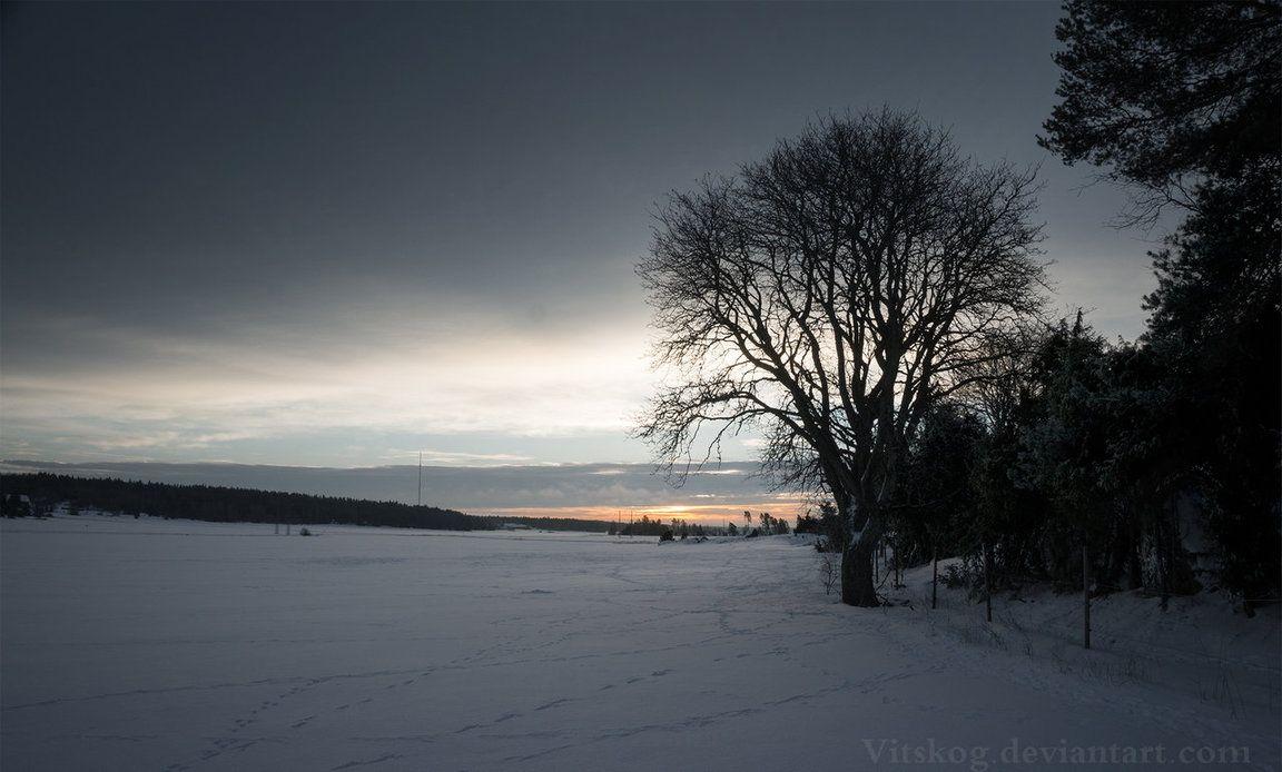 cold days by vitskog
