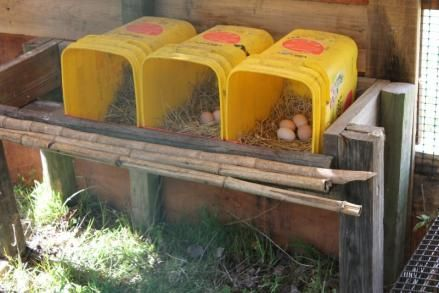 Chicken coop house plans gallery decor8rgirlcom chicken for Design your own egg boxes
