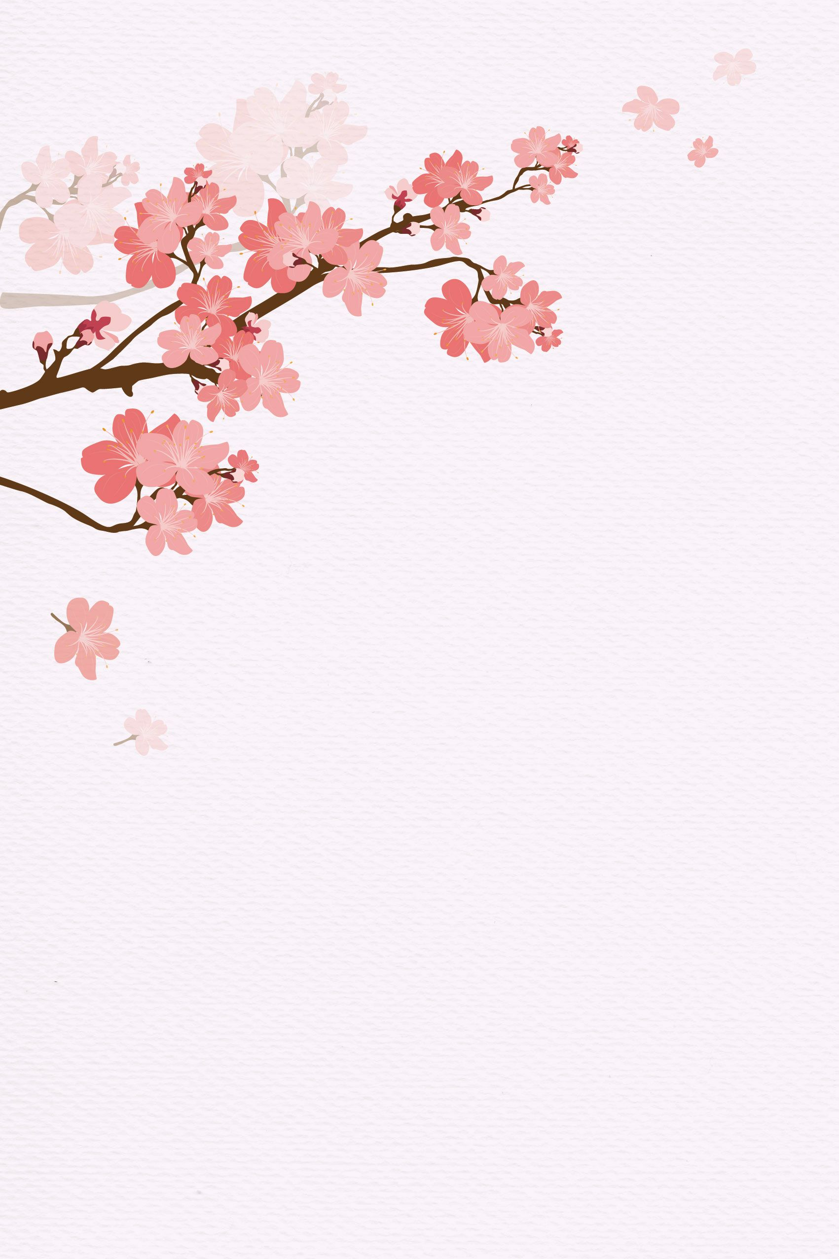 Sakura Background Bunga Sakura Bunga Tropis Wallpaper Bunga
