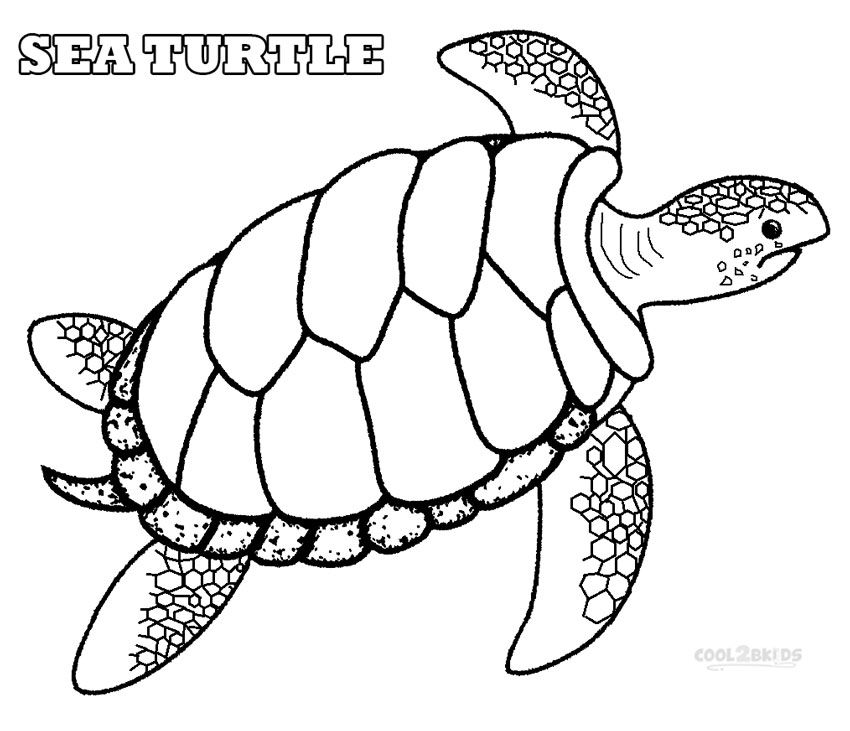 Green Sea Turtle Coloring Pages | Craft - Printable ideas ...