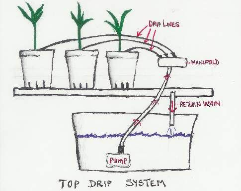 Diagram Of Top Drip Hydroponic System For The Home Pinterest