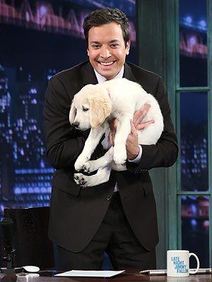 Jimmy Fallon Late Night Tonight Show Nbc Jay Leno Jimmy