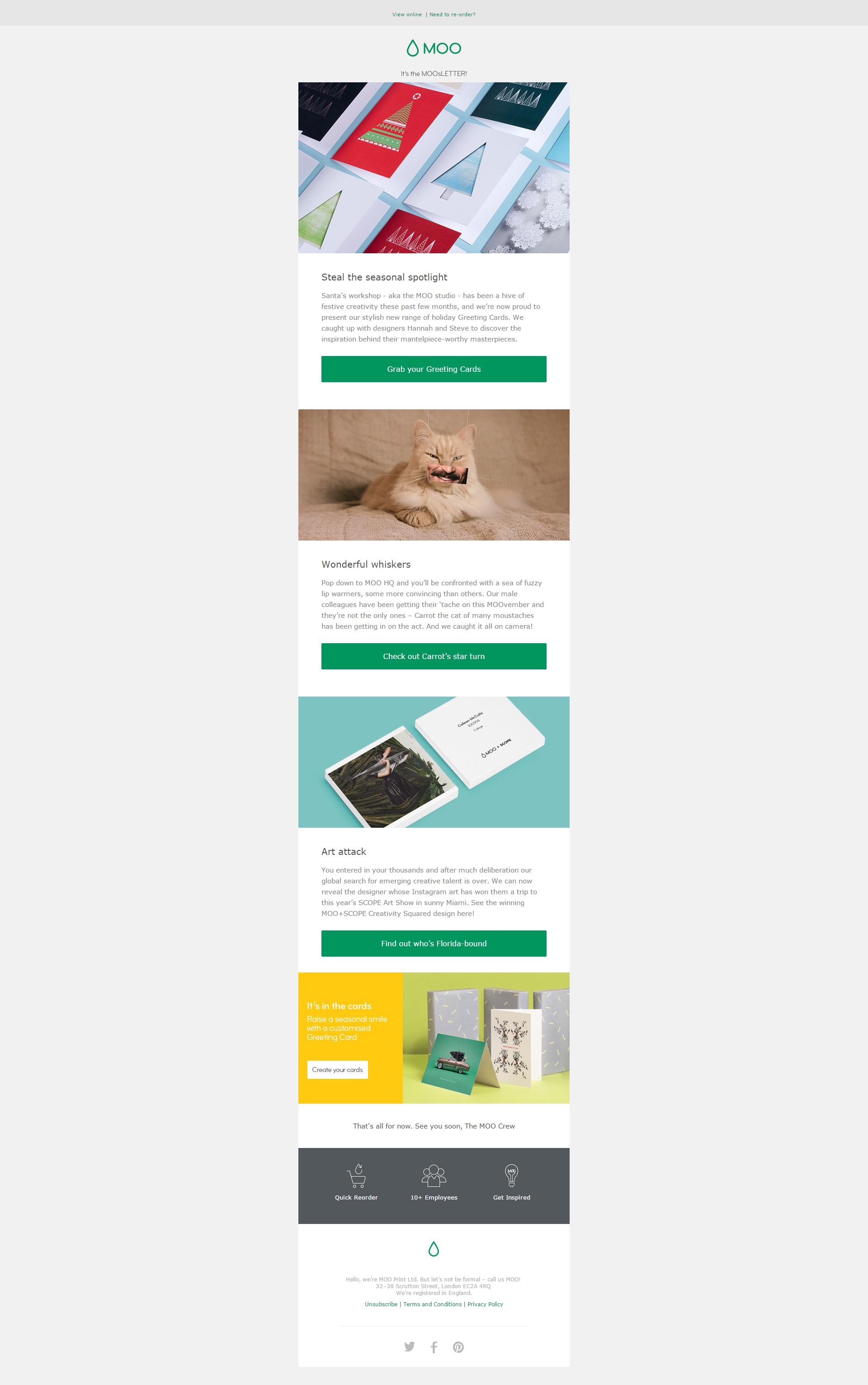 Moo Email Newsletter I LOVE EMAIL Pinterest